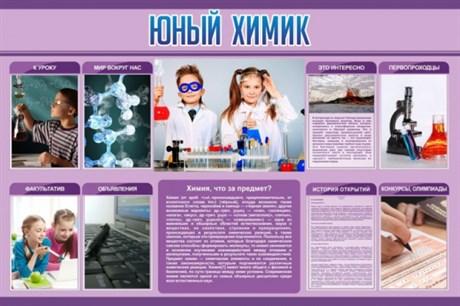 Стенд Юный химик - фото 58064