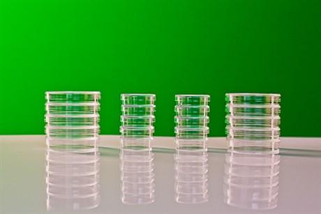 Набор чашек Петри - фото 58243