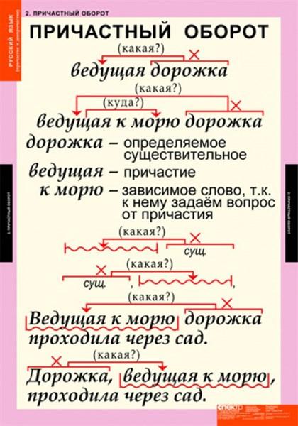 Комплект таблиц. Русский язык. Причастие и деепричастие. 12 таблиц - фото 58728