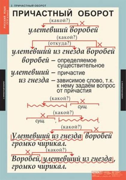 Комплект таблиц. Русский язык 7 класс (7 таблиц) - фото 58738