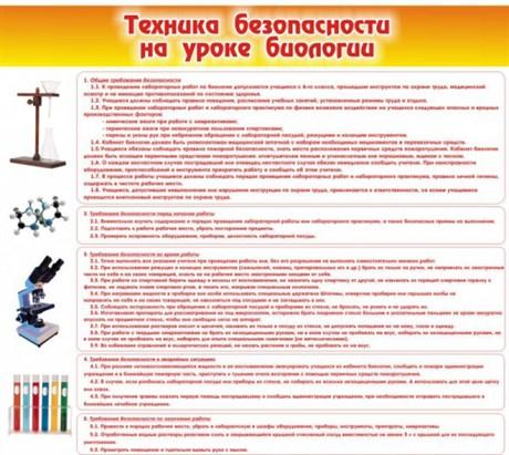 Стенд Техника безопасности на уроках биологии - фото 58905