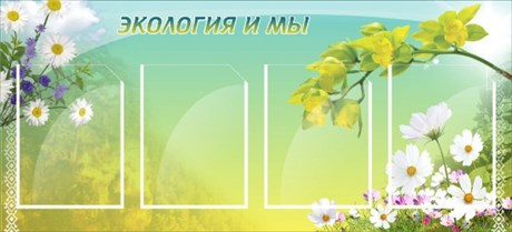 Стенд Экология и мы - фото 58906
