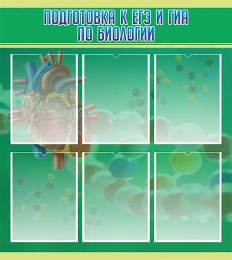 Стенд Подготовка к ЕГЭ и ГИА по биологии - фото 58911