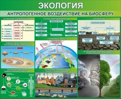 """Стенд """"Экология. Антропогенное воздействие на биосферу"""" - фото 58916"""