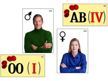 """Модель-аппликация """"Генетика групп крови"""" - фото 58945"""