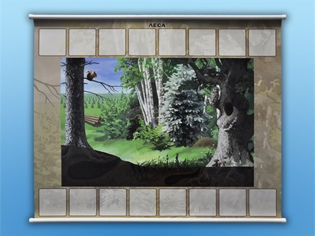 """Магнитно-маркерный плакат """"Леса"""" с набором магнитных карточек + методические рекомендации - фото 60227"""