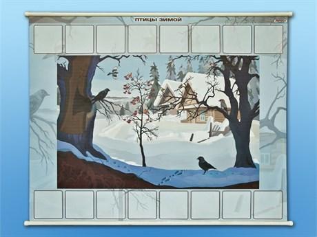 """Магнитно-маркерный плакат """"Птицы зимой"""" с набором магнитных карточек + методические рекомендации - фото 60231"""