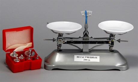 Весы учебные с гирями до 200 гр. - фото 61337