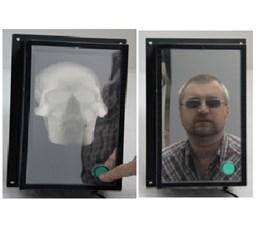 Интерактивный  экспонат «Череп в зеркале»
