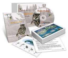 Комбинированное наглядное пособие  «Животные»