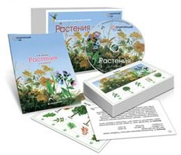 Комбинированное наглядное пособие  «Растения»