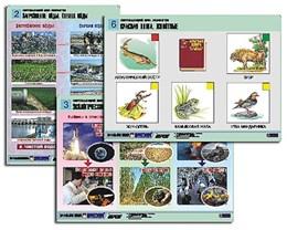 "Комплект таблиц для нач. шк. ""Окружающий мир. Экология"" (6 табл., формат А1,лам.)"