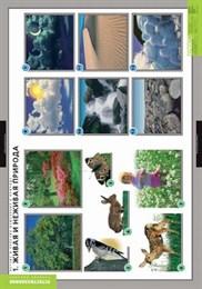 Комплект таблиц - Летние и осенние изменения в природе