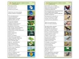 "Комплект карточек (10) ""Обучающий калейдоскоп. Природа"
