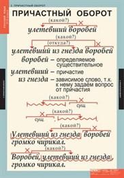 Комплект таблиц. Русский язык 7 класс (7 таблиц)