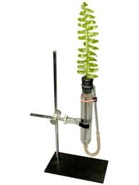 Прибор для демонстрации всасывания воды корнями