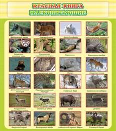 Стенд Красная книга - млекопитающие