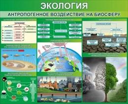 """Стенд """"Экология. Антропогенное воздействие на биосферу"""""""