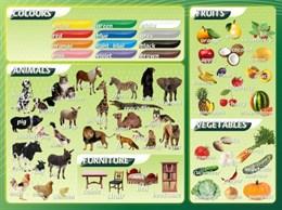 Стенд Цвета, животные, фрукты, овощи