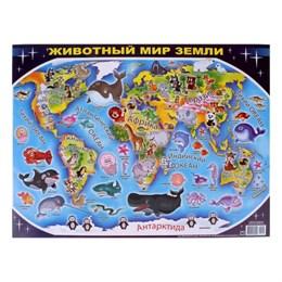 """Плакат """"Животный мир земли"""""""