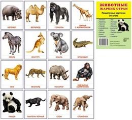Животные жарких стран 16 раздаточных карточек