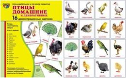 Дем. картинки СУПЕР Птицы домашние и декоративные