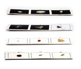 Микропрепараты для стереомикроскопа. Набор  Соль, кирпич, лист дерева и пр. (12 элементов)