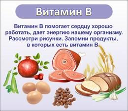 стенд ВИТАМИН В