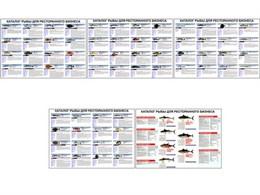 """Плакаты ПРОФТЕХ """"Каталог рыб для ресторанного бизнеса"""""""