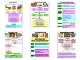 """Плакаты ПРОФТЕХ """"Технологические схемы приготовления рыбы"""""""