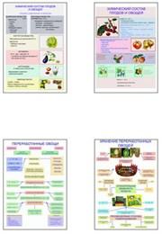 """Плакаты ПРОФТЕХ """"Классификация овощей и переработка"""""""