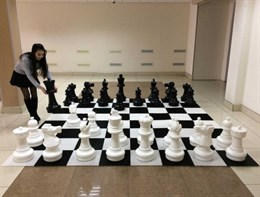 Гигантские шахматные фигуры (61 см)  без доски