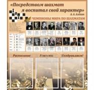 Шахматы, тематический стенд