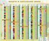 Стенд Флаги и население мира - фото 59060